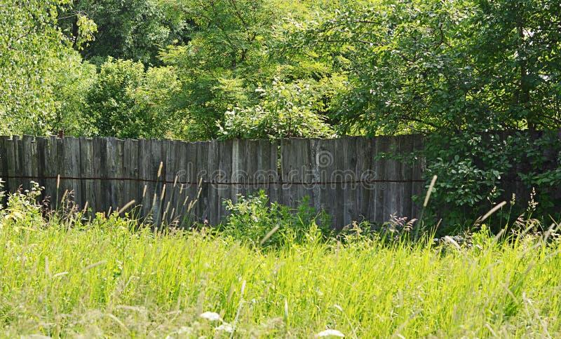 Доски деревянной загородки стоковые изображения rf