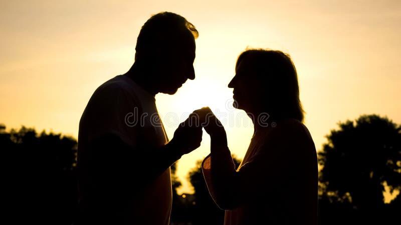 Достигшая возраста рука женщины удерживания силуэта человека в сумеречной освещенности, нежности стоковое изображение rf