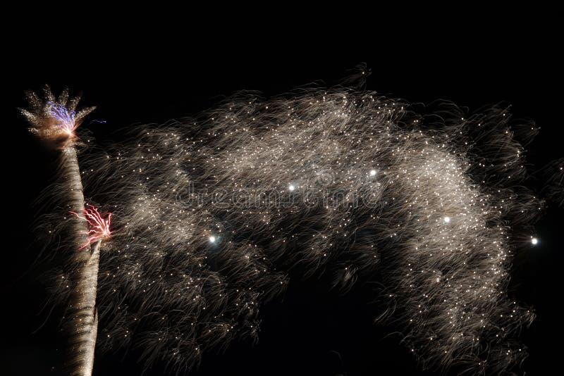 Долгая выдержка фейерверков стоковая фотография rf