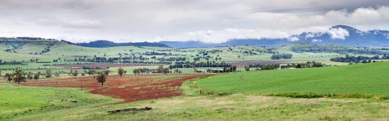 Долина Австралия Bylong стоковая фотография