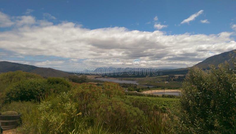 Долина вина стоковое изображение