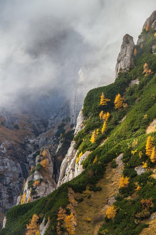 Долина в горах Bucegi, Румыния горы стоковая фотография rf