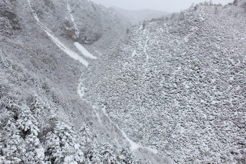 Долина голубой луны, Shangrila, Юньнань, Китай стоковое изображение