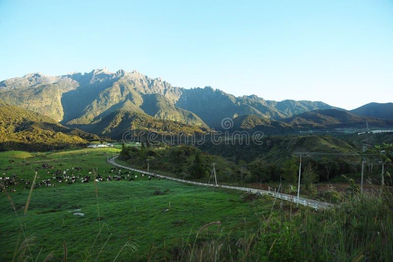 Долина земледелия около горы Kinabalu стоковые изображения