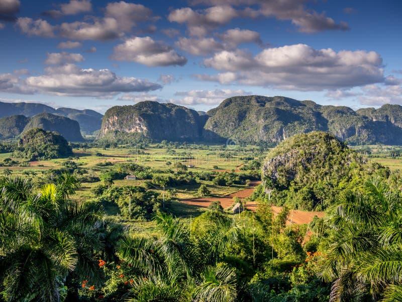 Долина Куба Vinales стоковое изображение rf