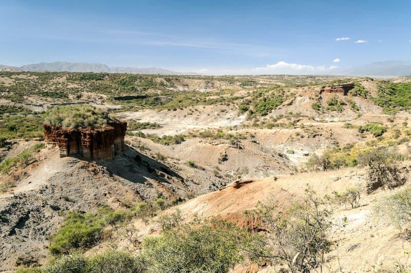 Долина с раскопками Tanzanite стоковое фото rf