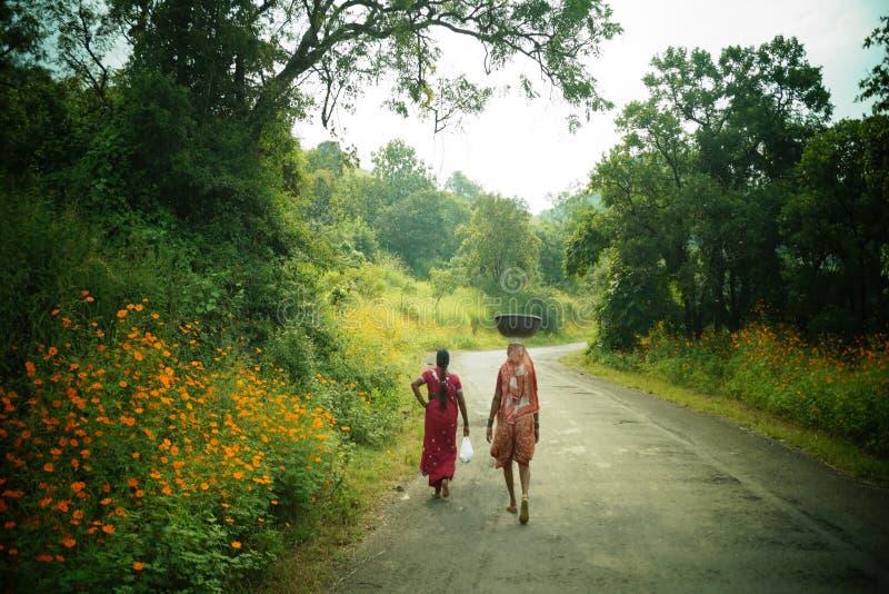 Долина цветков стоковая фотография