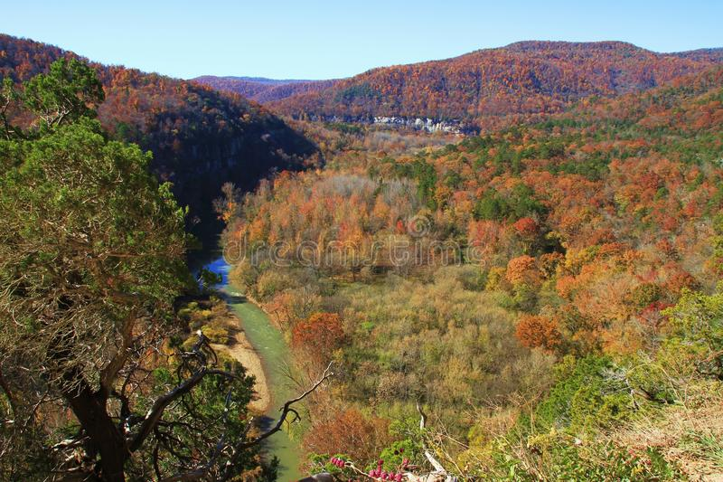 Долина цветов падения стоковые изображения rf