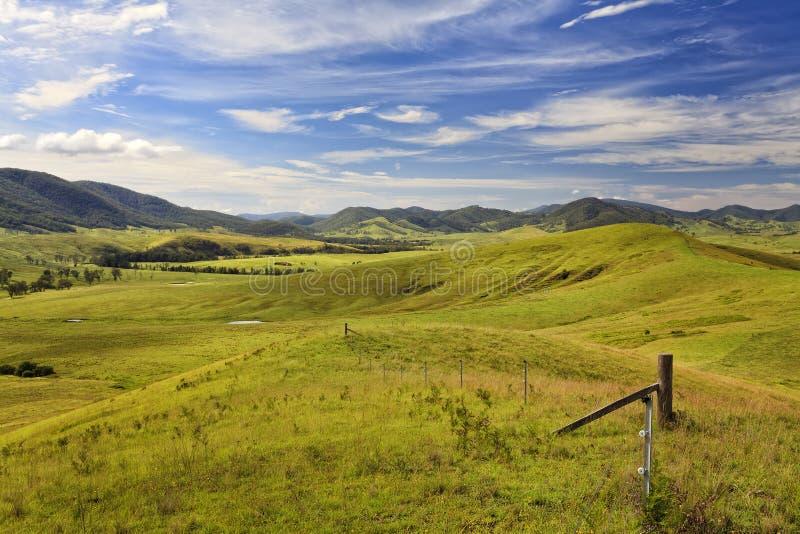 Долина Btops Cobark зеленая стоковая фотография