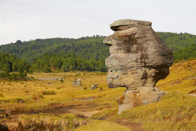 Долина IV encimadas Piedras стоковые изображения rf