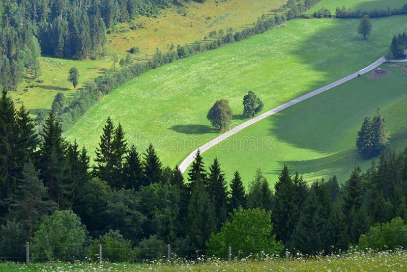 Долина Logar или dolina Logarska, Словения, Европа Путешествия стоковые фотографии rf