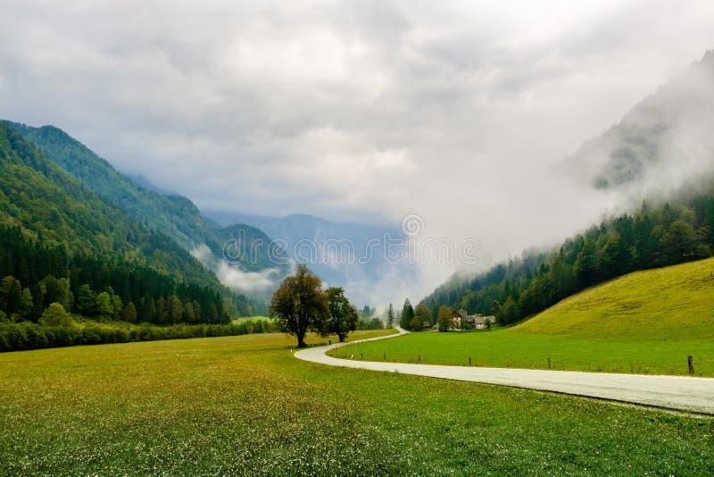 Долина Logar - Logarska Dolina, Словения стоковые изображения rf
