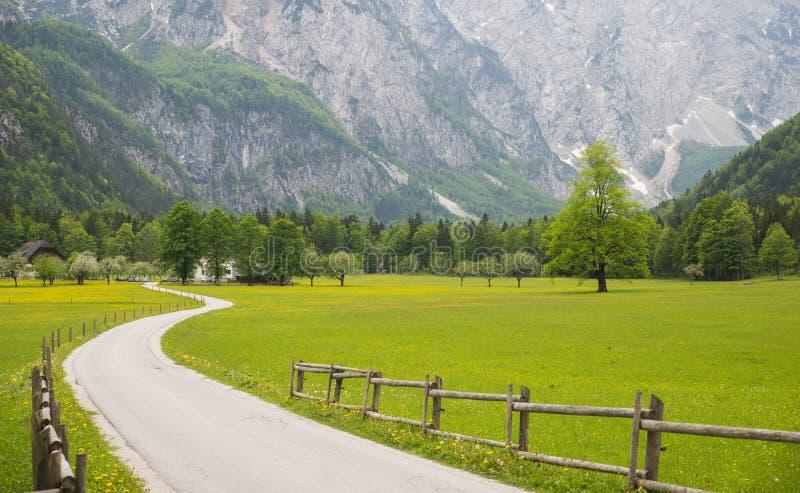 Долина Logarska dolina/Logar, Словения стоковое изображение rf