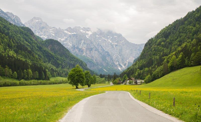 Долина Logarska dolina/Logar, Словения стоковые фото