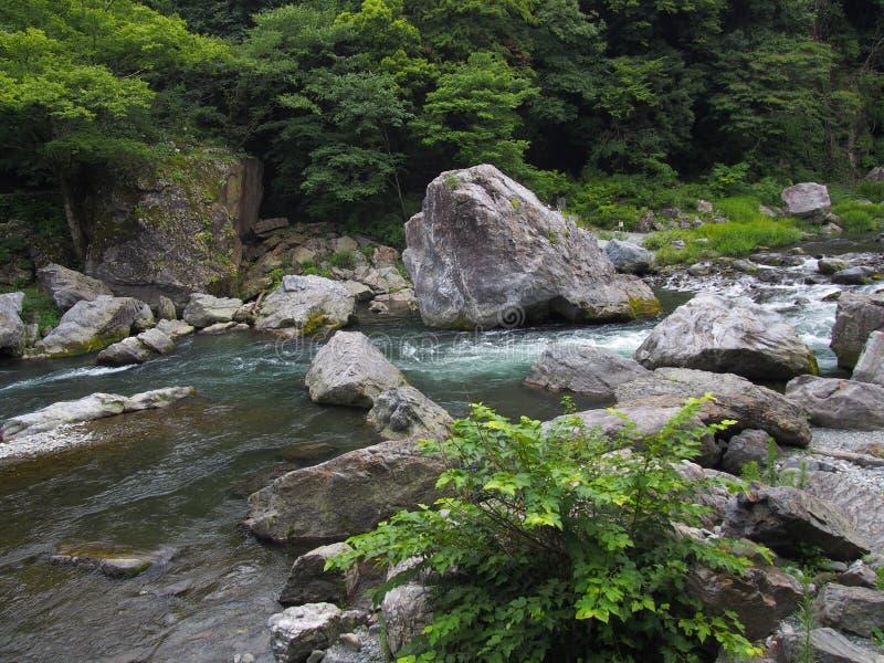 Долина Mitake в Okutama, токио стоковые изображения