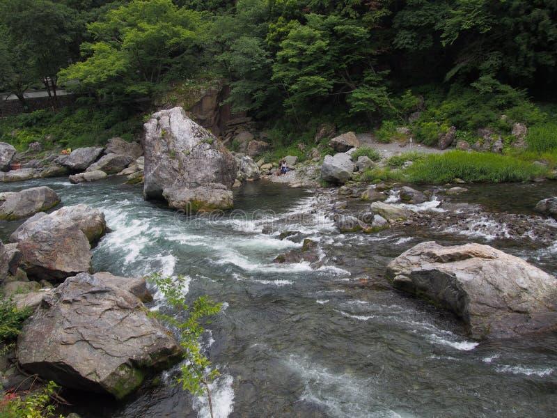 Долина Mitake в Okutama, токио стоковое изображение rf