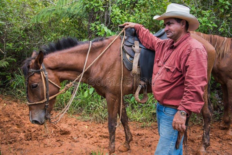 Долина Vinales, Куба - 24-ое сентября 2015: Местный ковбой подготавливает стоковое фото rf