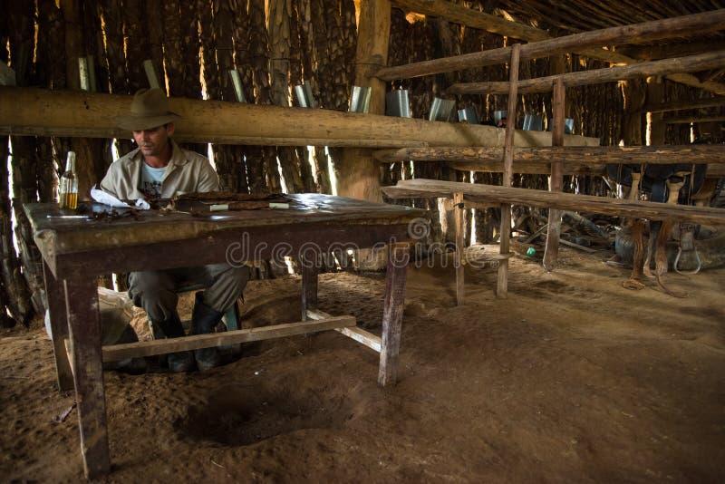 Долина Vinales, Куба - 24-ое сентября 2015: Молодые кубинськие мамы фермера стоковое фото rf