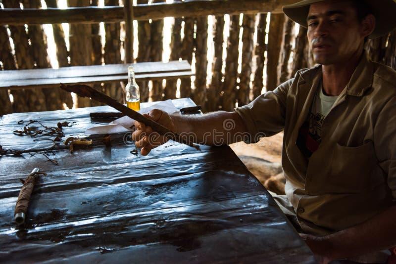 Долина Vinales, Куба - 24-ое сентября 2015: Молодые кубинськие мамы фермера стоковое фото