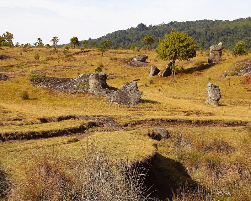 Долина XXV encimadas Piedras стоковое фото