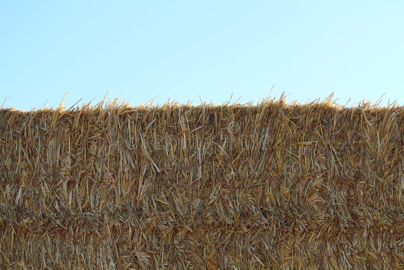 Драгоценное изображение части соломы готовой для того чтобы храниться стоковое изображение rf