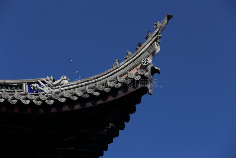 Дракон на крыше стоковые фотографии rf