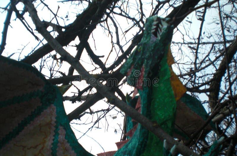 Дракон среди ветвей леса стоковое изображение
