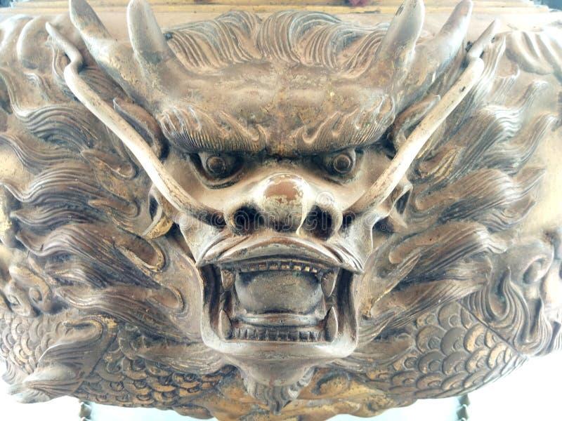 Дракон стоковая фотография rf