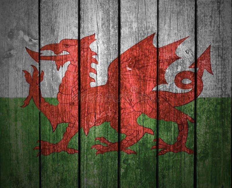 Дракон Welsh на деревянной загородке стоковое фото rf