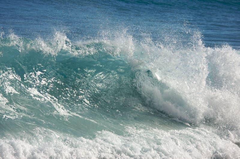 драматическая волна shorebreak стоковые фото