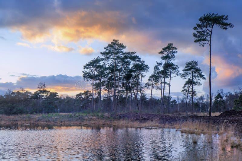 Драматические облака над заболоченным местом на сумерк, Нидерландами стоковая фотография rf