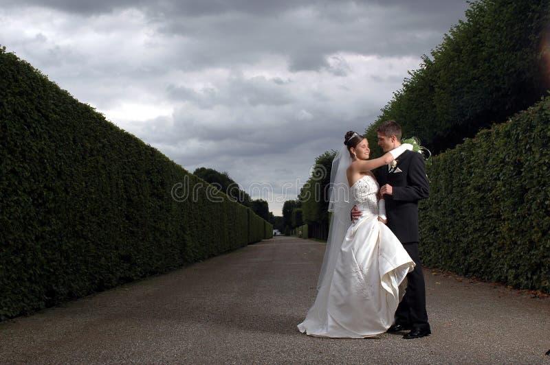 Download драматическим венчание поврежденное Inviroment Стоковое Изображение - изображение насчитывающей ободрение, выражение: 493839
