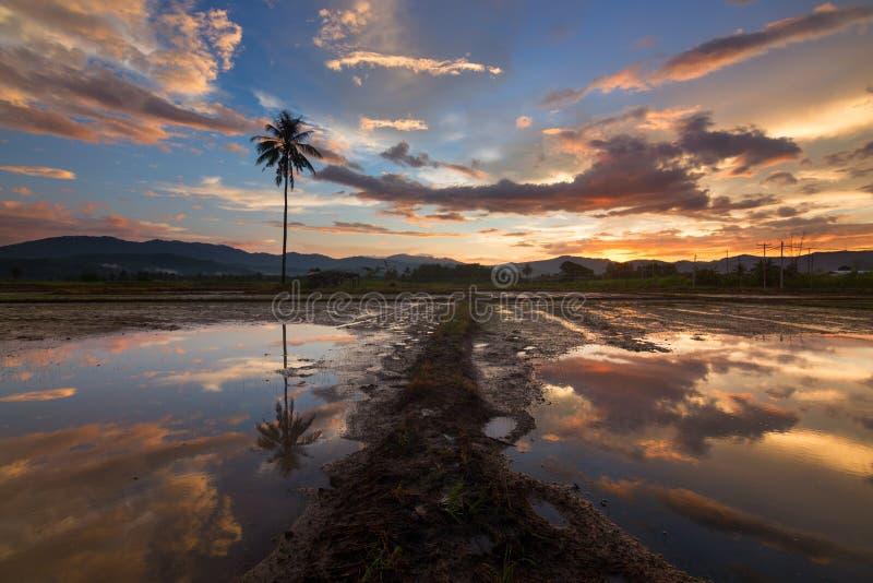 Драматическое и красивое отражение захода солнца стоковая фотография