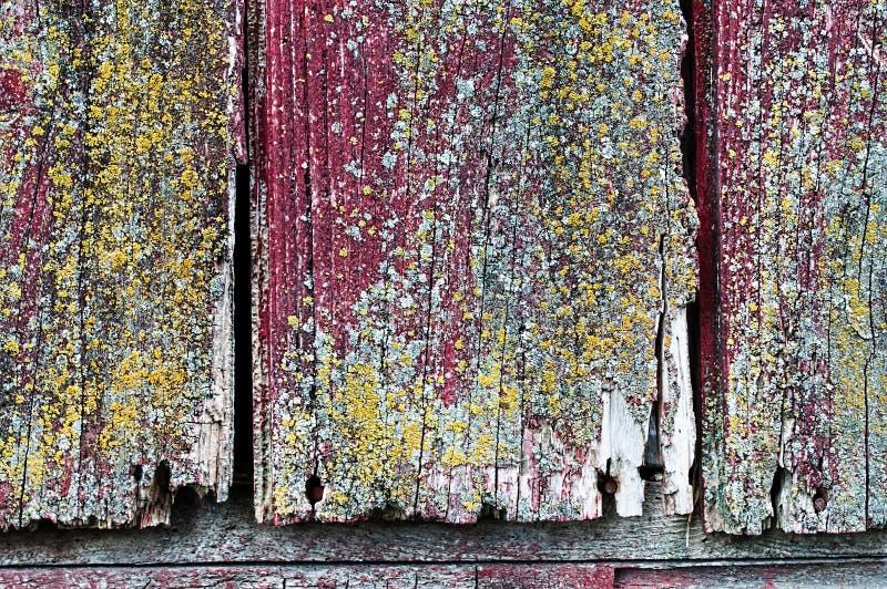 Древесина амбара стоковые изображения rf