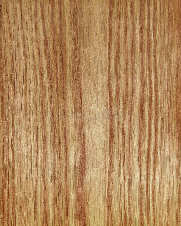 Древесина гайки стоковое изображение