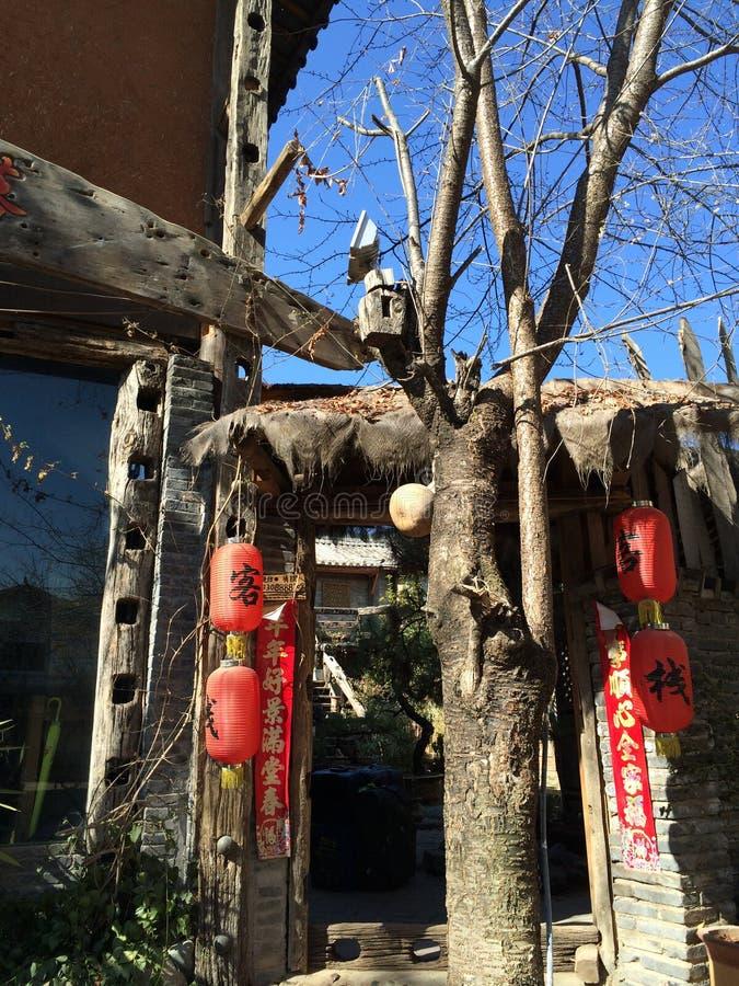 Древесина зимы Юньнань стоковые фотографии rf