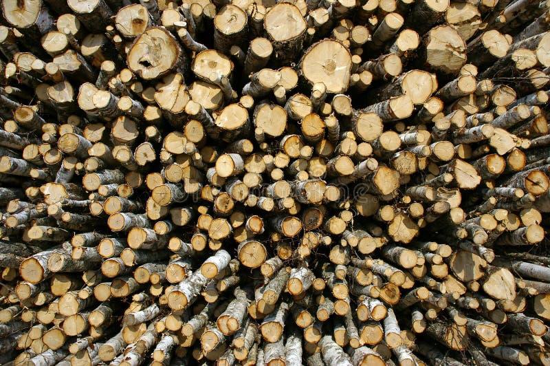 древесина индустрии стоковая фотография