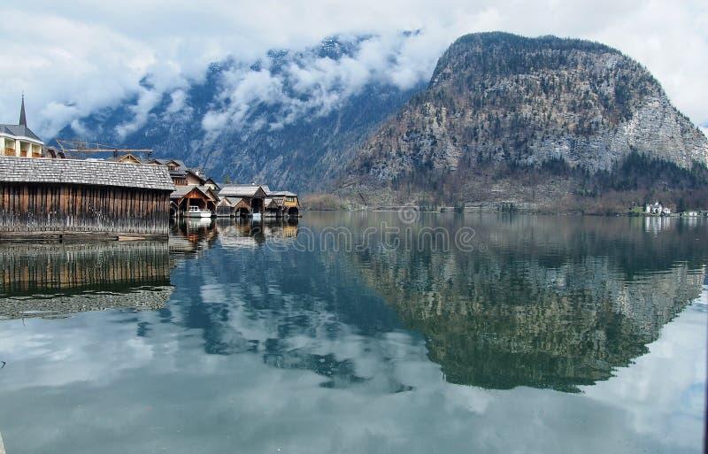 Древесина и отражение озера стоковое изображение