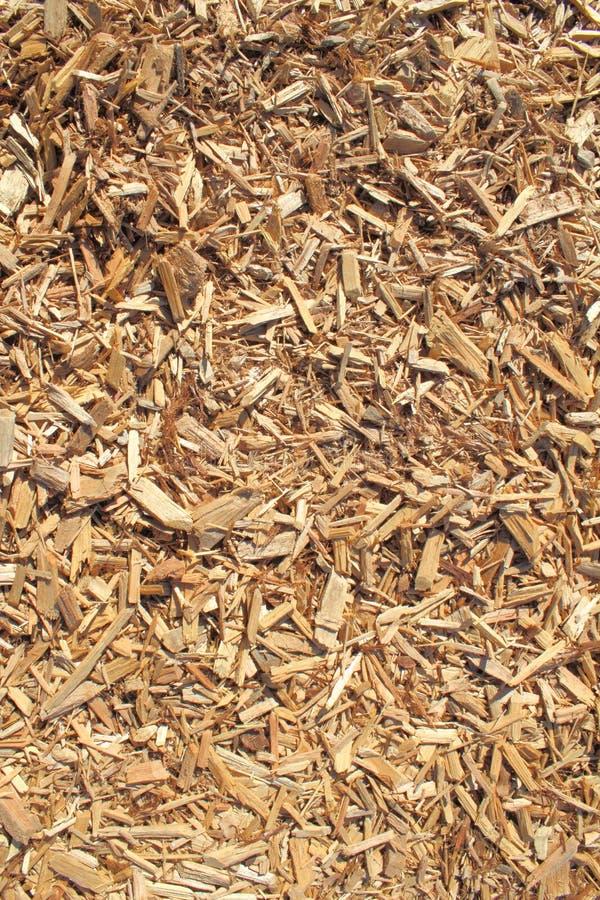 древесина обломока кедра предпосылки стоковые изображения
