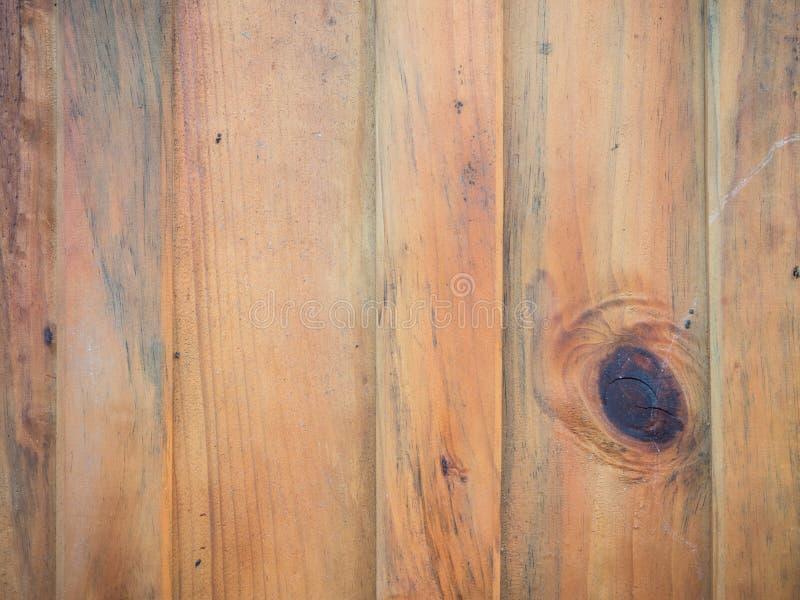 Древесина предкрылка и gnarl установленная вертикаль стоковое изображение rf