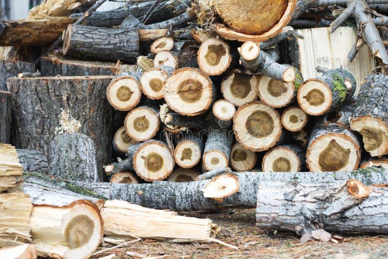 Древесина режет предпосылку года сбора винограда природы стоковое фото rf