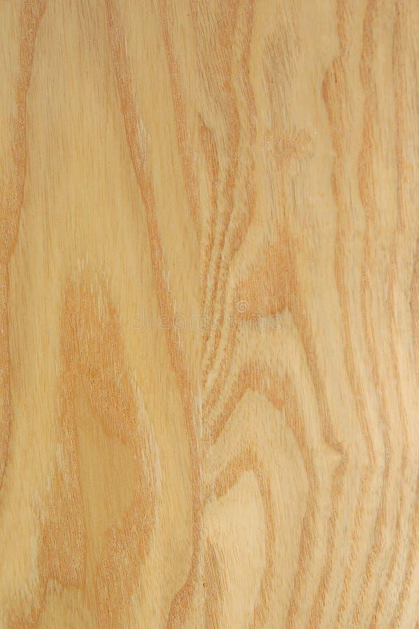 древесина сосенки стоковое фото rf