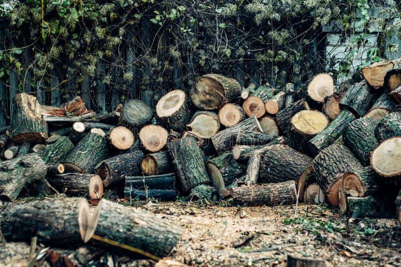 Древесина спилена в много малых частей стоковое изображение rf