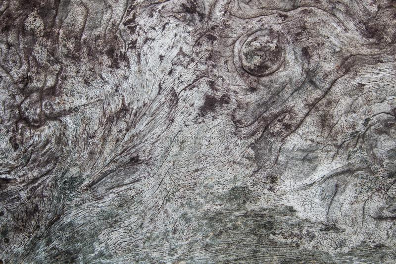 древесина текстуры теней предпосылки коричневая поверхность старого темного года сбора винограда, естественной картины материал д стоковые фото