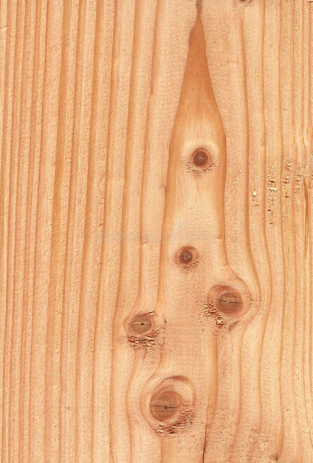 древесина текстуры pseudotsuga стоковое фото