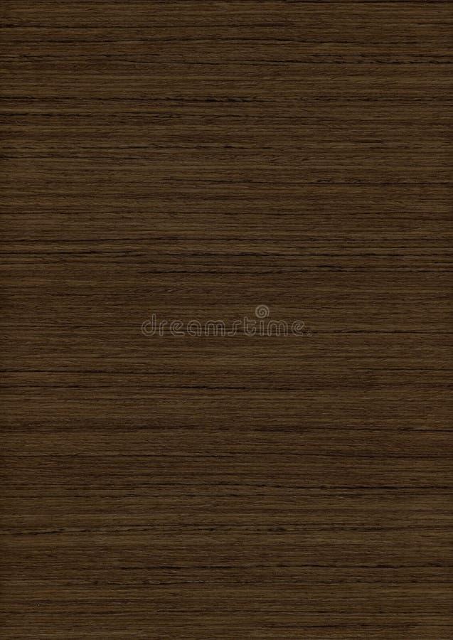 древесина текстуры teak стоковые фото