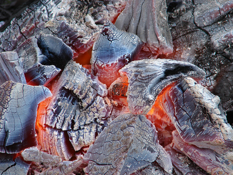 древесина угля стоковые фотографии rf