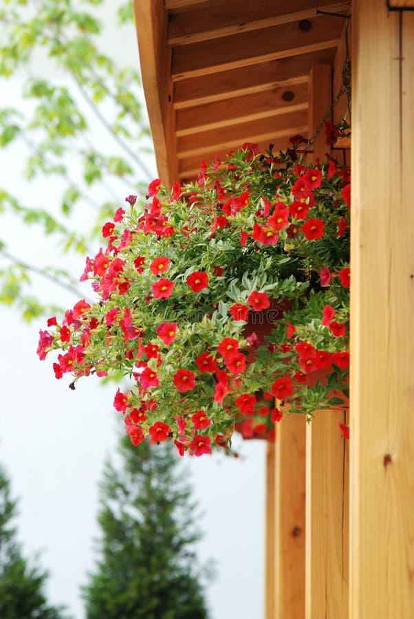 древесина цветка предпосылки стоковое фото