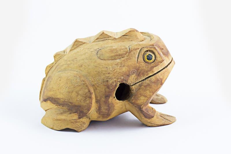 Древесина лягушки стоковое изображение rf
