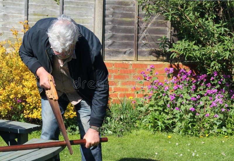 Древесина sawing человека стоковые изображения